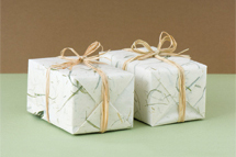 2 neatly wrapped boxes cropped